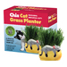 It's the Cat's Meow! Grow a healthy pesticide-free snack for your favorite feline! Chia Cat Grass Planter provides your cat with a sweet oat and wheatgrass mix that's easy to grow and your cat is sure to love!