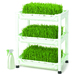 Sproutman's Wheatgrass Grower Set is the easy way to grow juice-bar-style trays of wheatgrass all year long in-home without messy soil or dirt. Sproutman's Wheatgrass Grower can be stacked up to 10 trays high with extra level sets sold separately.