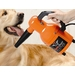 AIR FORCE QUICK DRAW PET DRYER