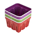 Crisp Berry Baskets - 3 pc. Set