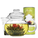 Borosilicate glass tea pot and lid, loose tea infuser and 12 different flowering Green Teas with Jasmine in a beautifully packed canister.